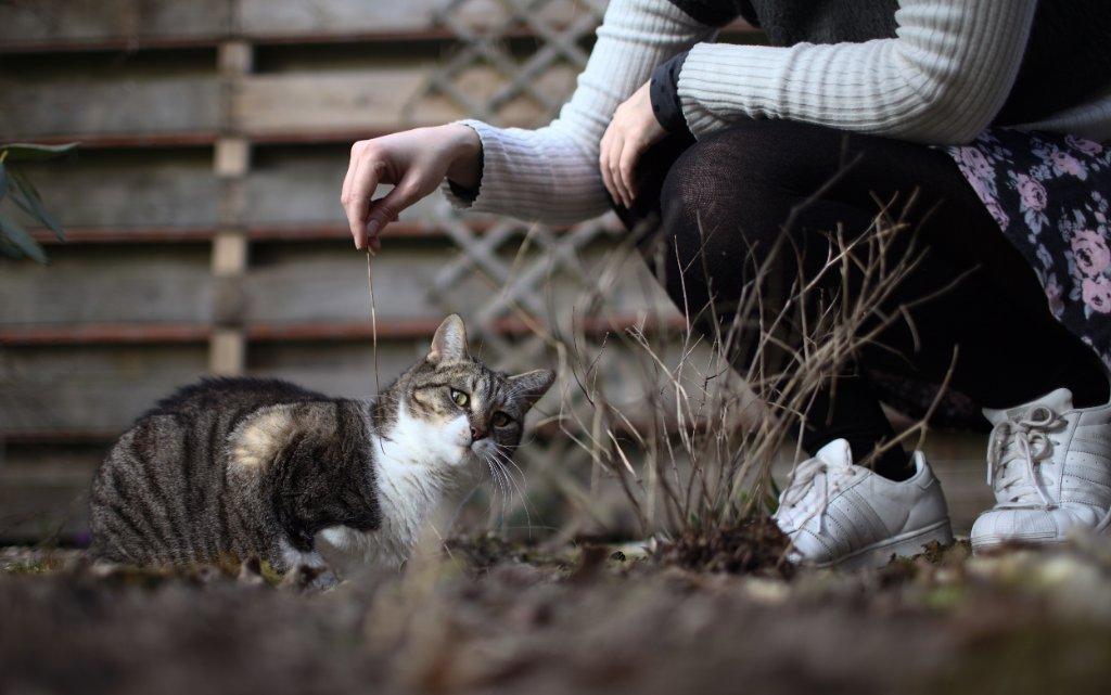 Shizuka met haar kat